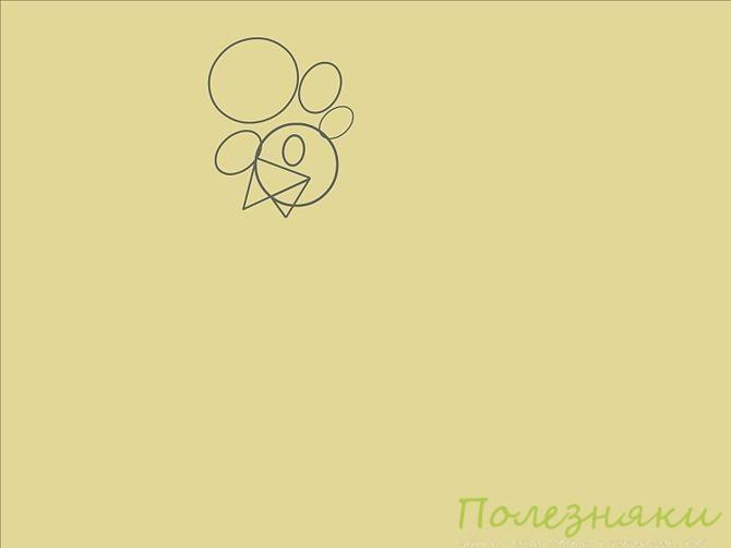 Нарисуйте четыре овала различных