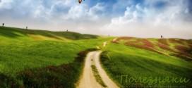 Путь к мечте: 8 шагов навстречу заветной цели