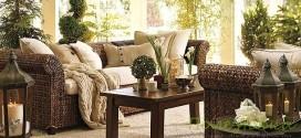 Как подбирать цветы и растения для жилых комнат?