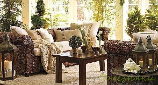 Как подбирать цветы и растения для жилых комнат