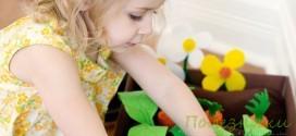 Игра огород: делаем своими руками