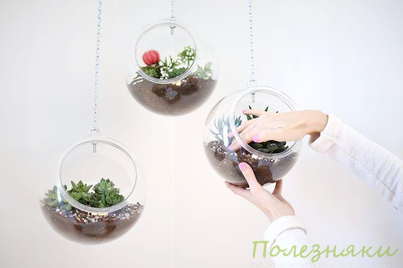 Как устроить подвесную оранжерею