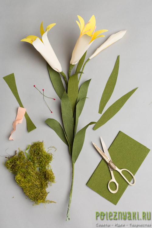 Бумажная лилия
