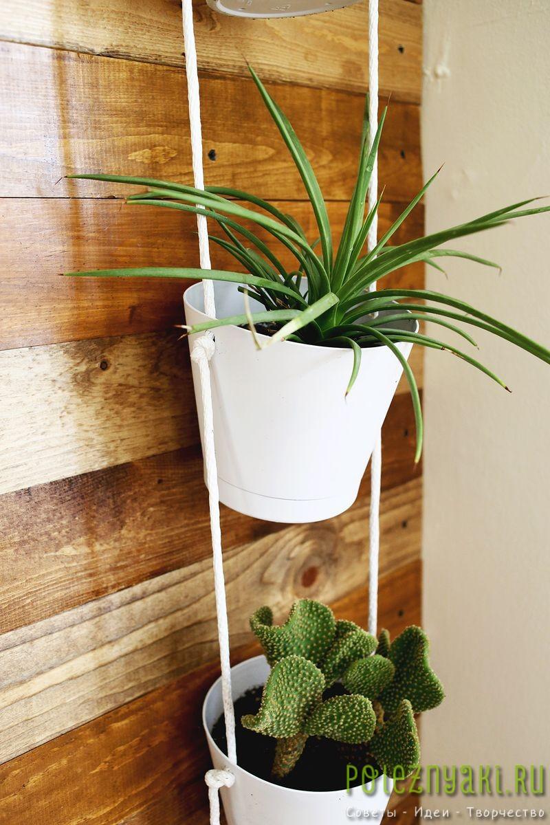 Как организовать в квартире подвесной сад подвешиваем 3