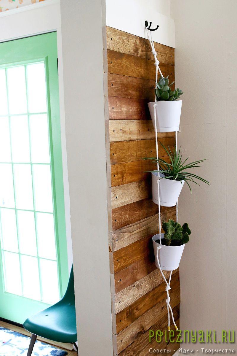Как организовать в квартире подвесной сад подвешиваем 4
