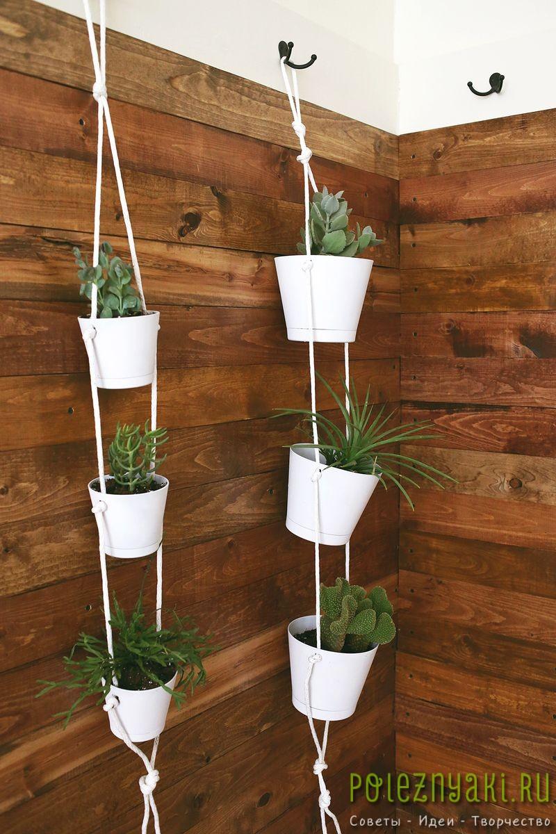 Как организовать в квартире подвесной сад подвешиваем