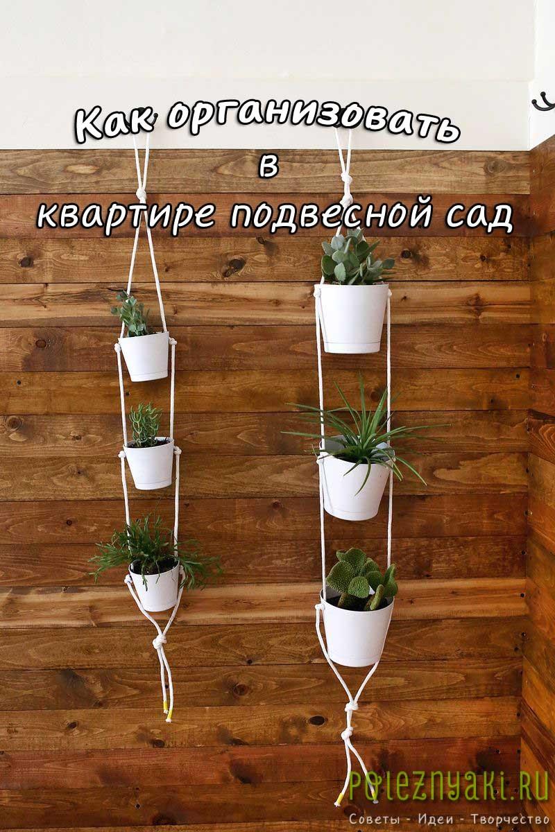 Как организовать в квартире подвесной сад