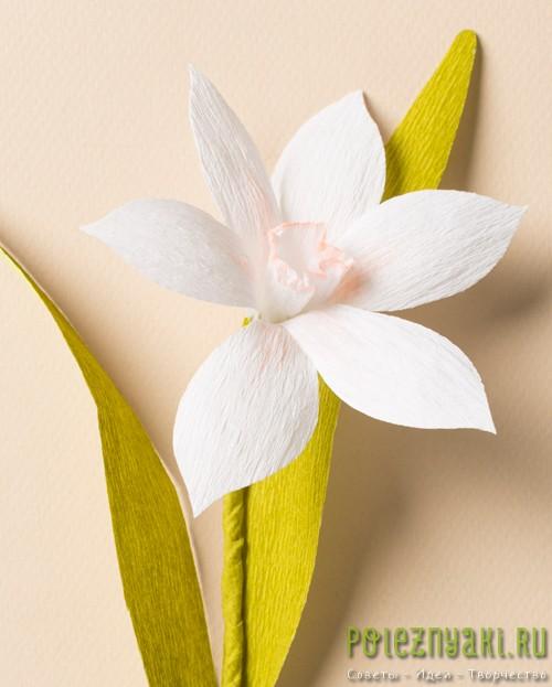 Нарцисс из гофрированной бумаги  готов