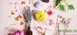 Композиции из засушенных цветов