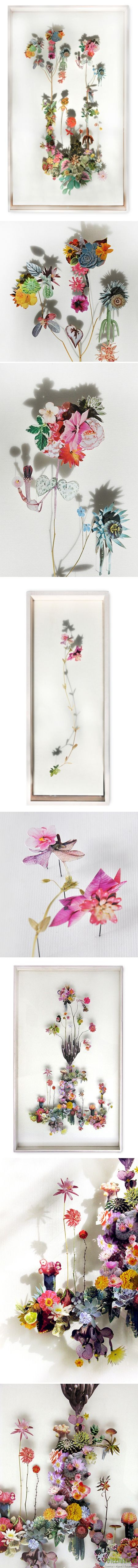 Композиции из засушенных цветов 3