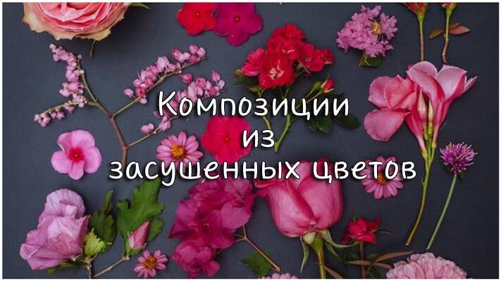 Композиции из засушенных цветов_1