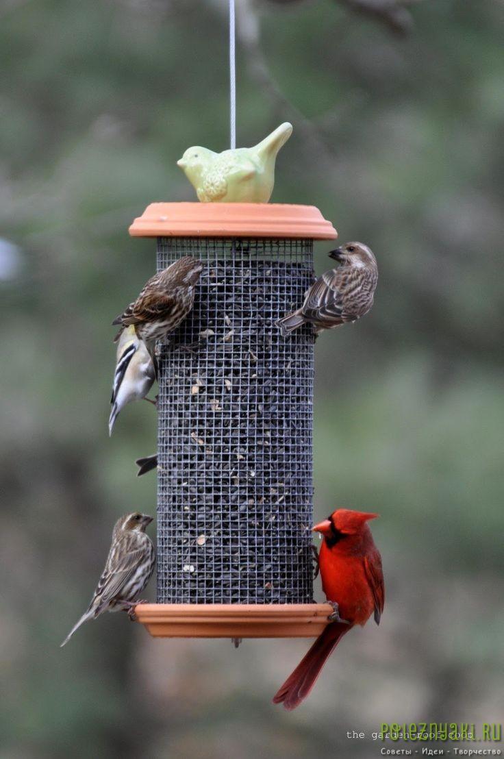 кормушка для птиц  в виде цилиндра
