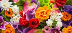 Цветы на Первое сентября: что дарить учителям?