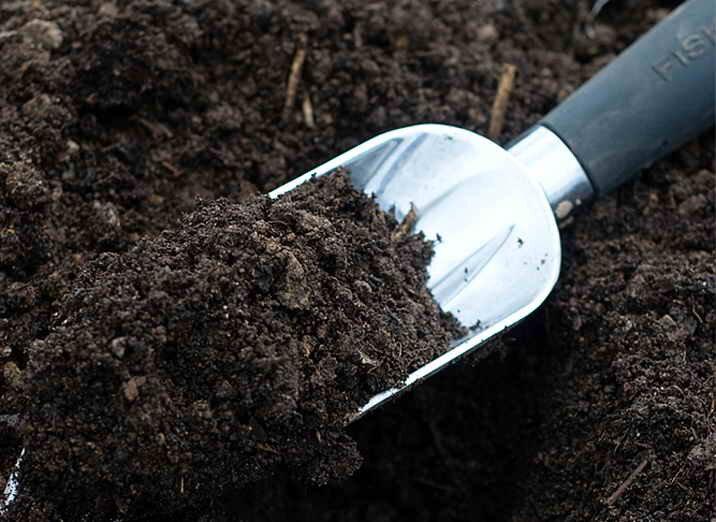 Почему я отказалась от покупной земли для выращивания рассады, сейчас использую только свой грунт, со своего огорода