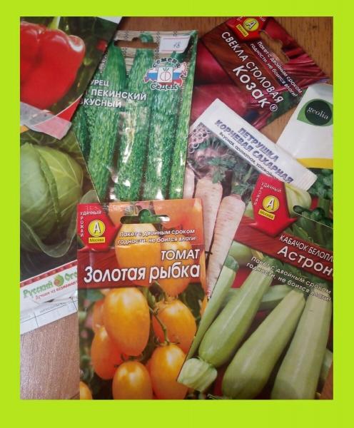 Как правильно готовить семена к посеву – одни охлаждать, другие - прогревать, третьи - замачивать