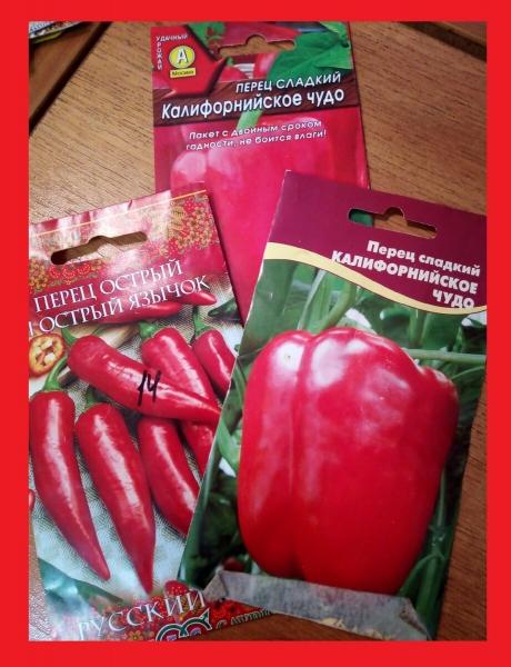 В январе я уже посеяла 6 видов огородных растений